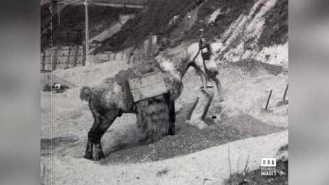 FECAMP - MONTEUX DE SABLE - 1946/60