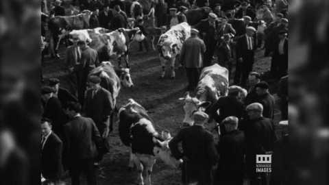 LESSAY - FOIRE COMMERCIALE - 1955