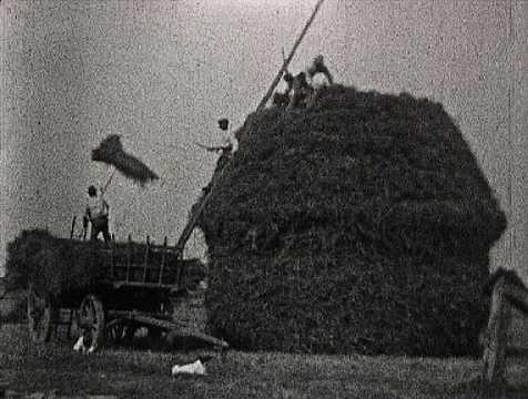 CONSTRUCTION D'UNE MEULE - FRESNAY (196)