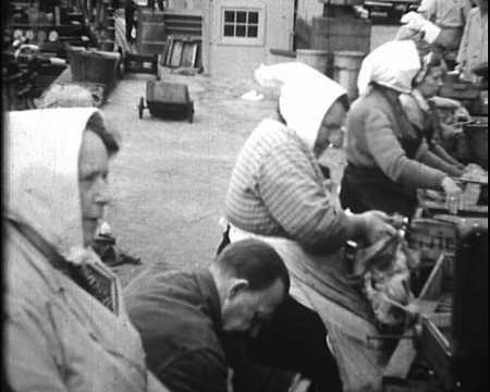 DANEMARK ET ALLEMAGNE ETE 1952